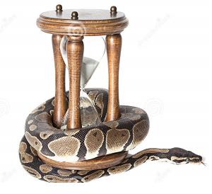 Змей Горы (ныч)