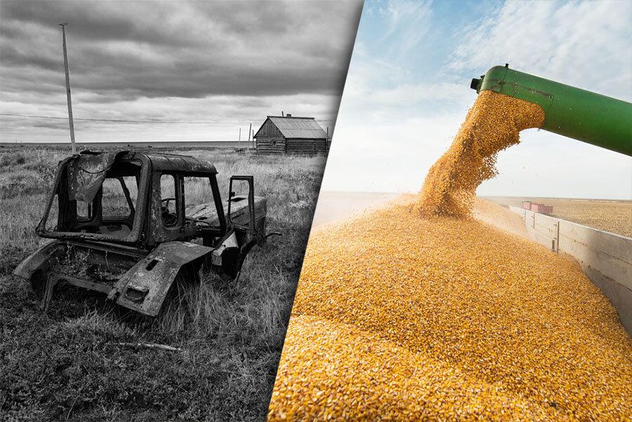 Рассказываю, почему при разваленном сельхозе в России полные прилавки и лидерство в экспорте зерновых