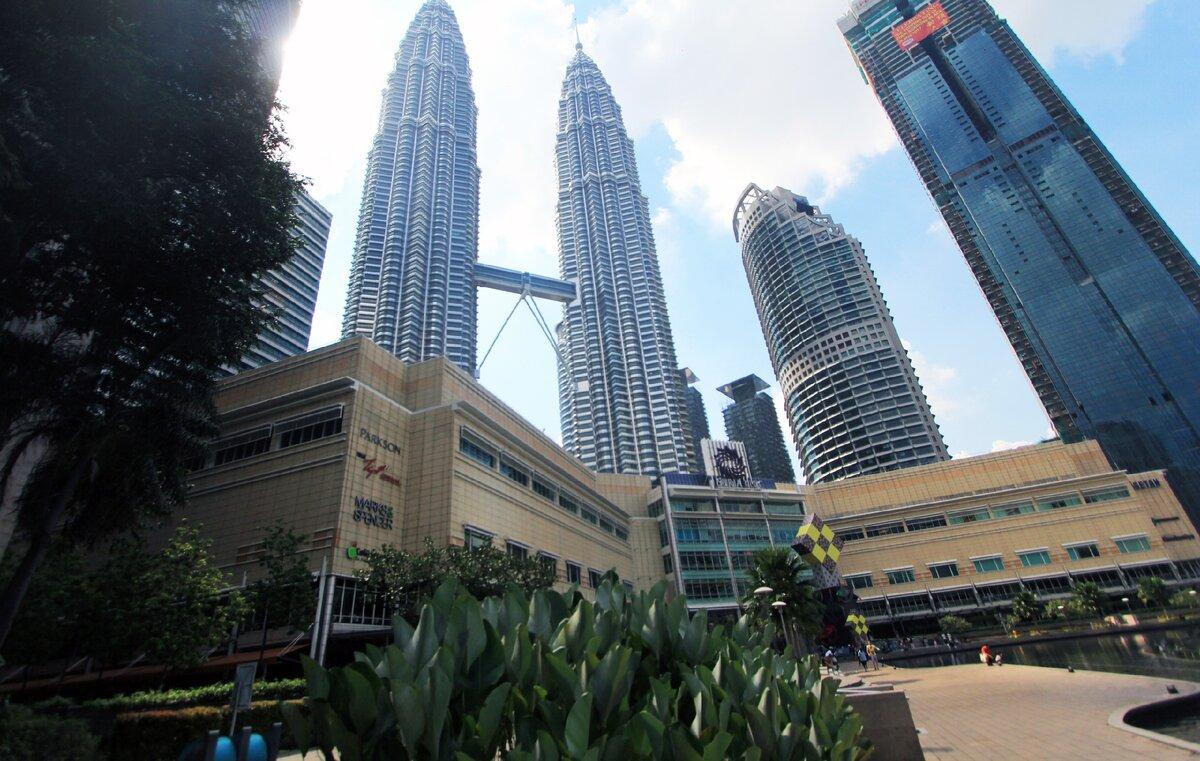 """""""Малазийской жир"""" или пальмовое масло: сколько и зачем его закупает Россия? Спросил знакомого малазийца"""